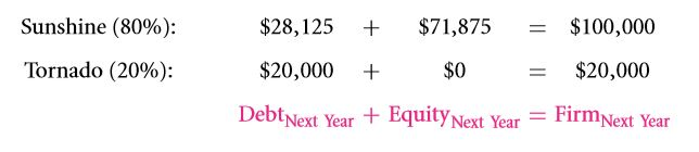 The Weighted Average Cost of Capital (WACC) 17