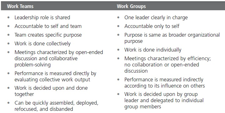 Turning Groups into Effective Teams 13